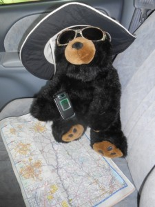 Navigational assistant