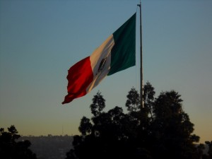 Mexican Border Flag