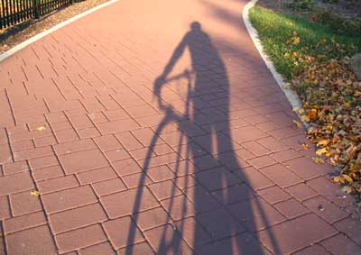 Autumn Bike Shadows by Shular Scudamore